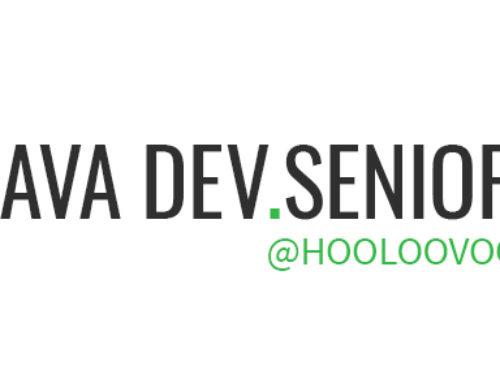 Java Dev.Senior @HOOLOOVOO
